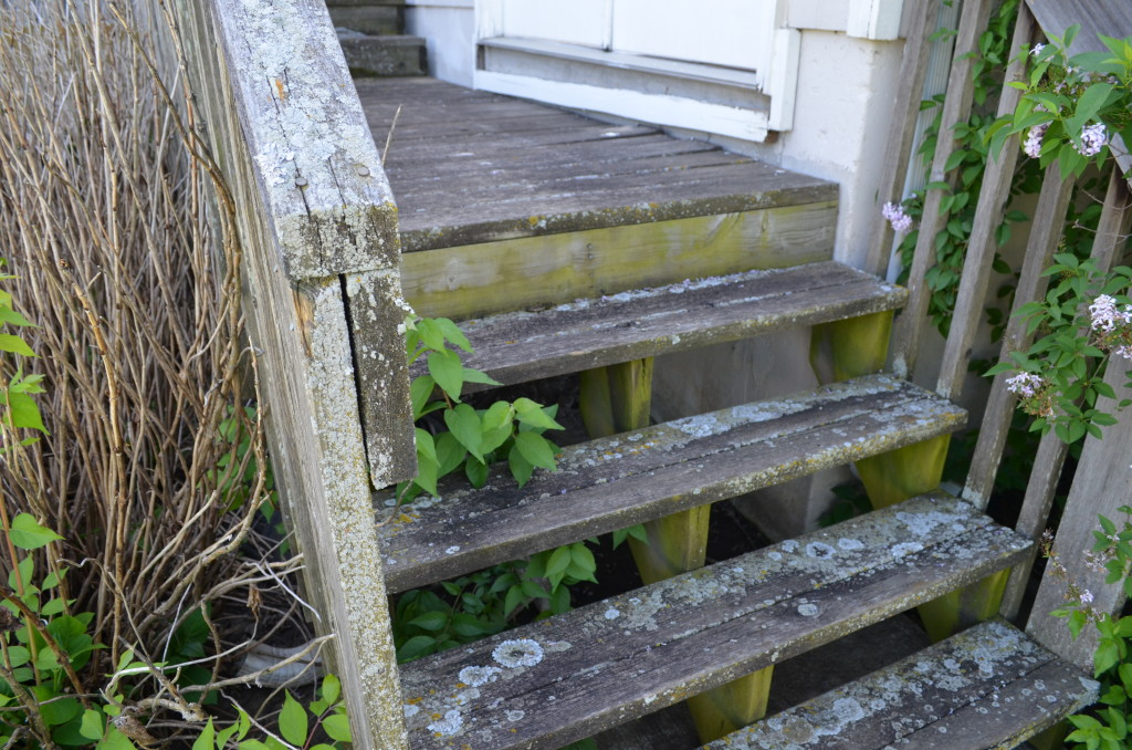 Picture of unused stairs